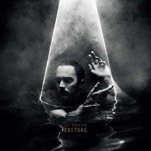 Editors - In Dreams (2015)