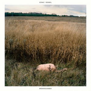 Sinai Vessel - Brokenlegged (2017)